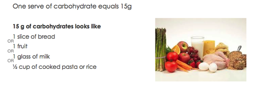 15g equals one serve of carbohydrate